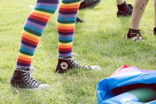 專注, 彩虹, 模糊, 特寫 的 免費圖庫相片