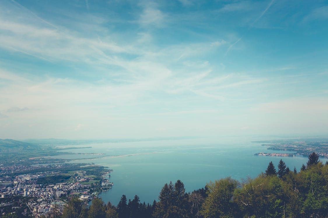 skyscape, ต้นไม้, ทะเล