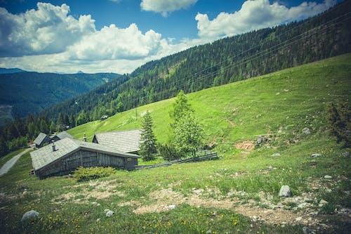 Kostnadsfri bild av bergen, gräs, hus, kulle