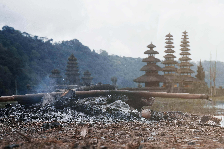 Closeup Photo of Brown Pagoda