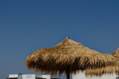 Foto d'estoc gratuïta de cabana de Nipa, cabanes a la platja, cabanya de Nipa, cabanyes a la platja