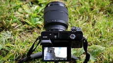 camera, photography, grass