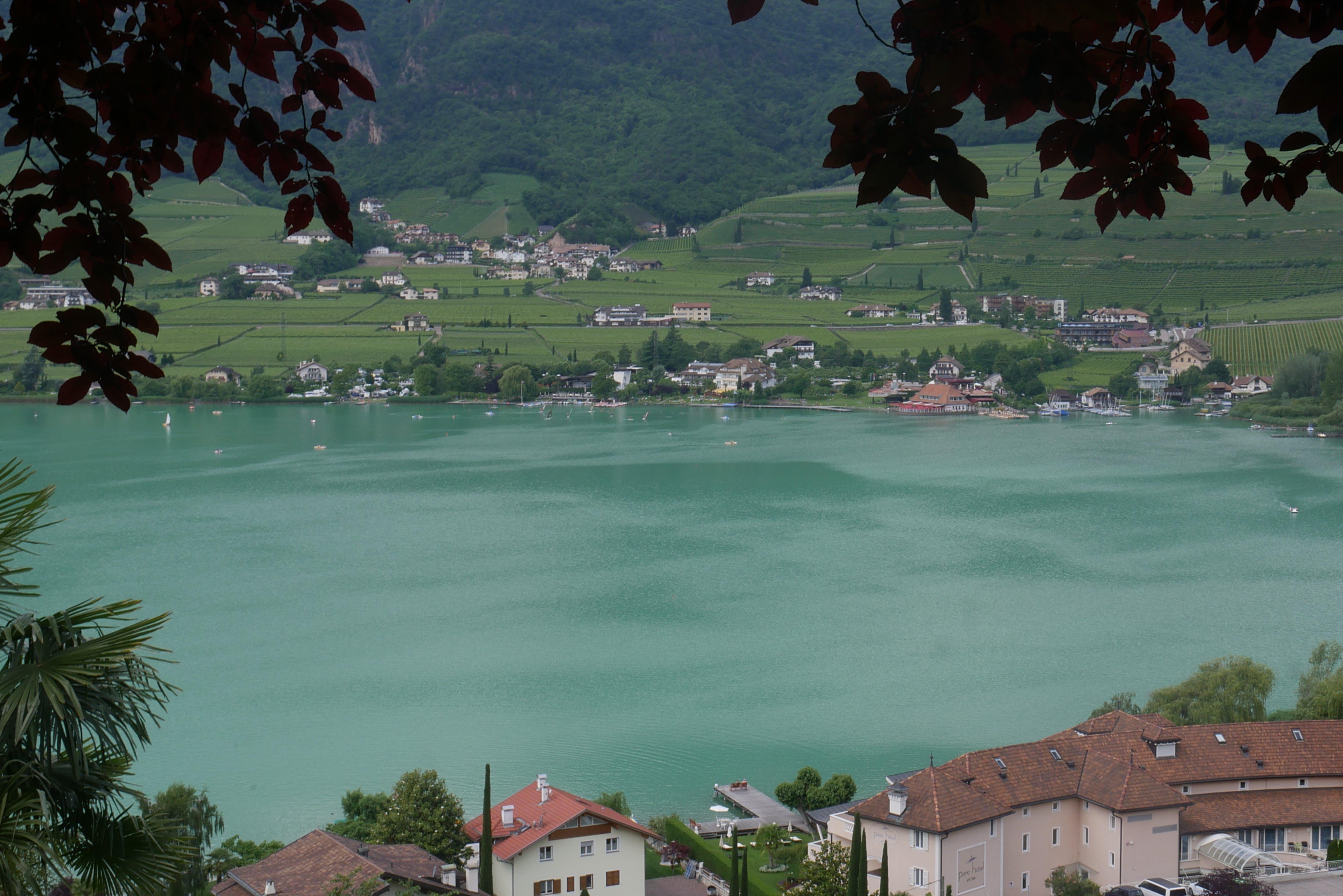 Free stock photo of see lake