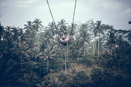Person Wearing White Shirt Riding Gray Swing Background of Trees
