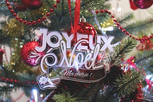 boule, Noel, sapin içeren Ücretsiz stok fotoğraf