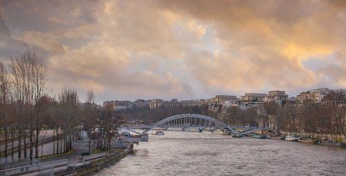 겨울 풍경, 다리, 파리의 무료 스톡 사진