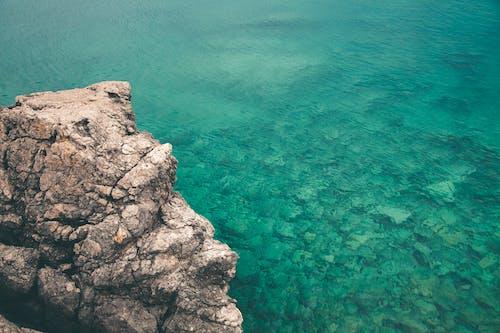 Foto profissional grátis de água, ao ar livre, cênico, coral