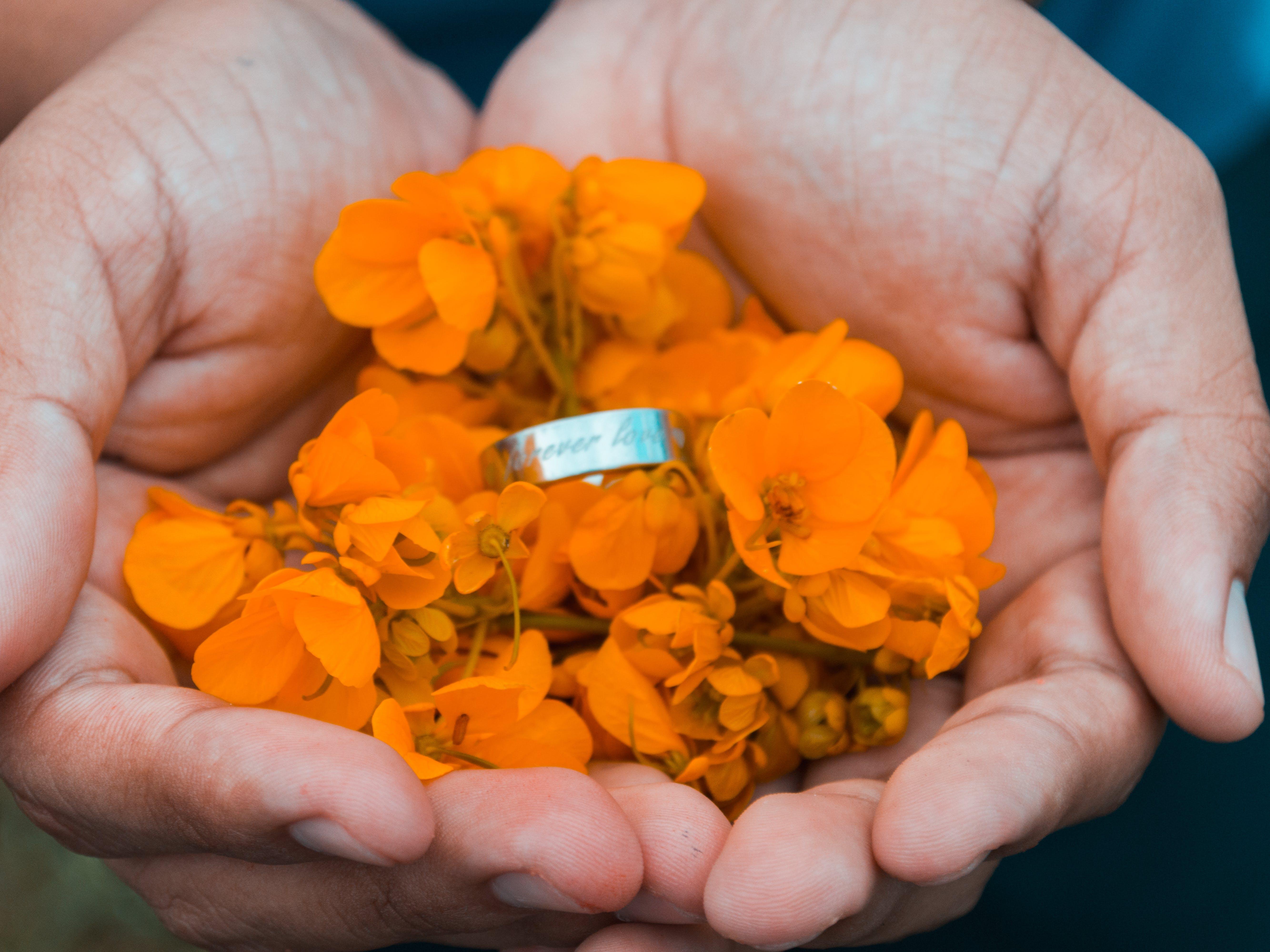 Free stock photo of flowers, hands, love, nikon