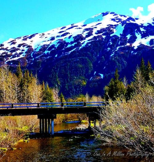 Darmowe zdjęcie z galerii z alaska, góry, natura