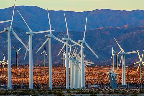 Darmowe zdjęcie z galerii z góra, wiatrak, wiatraki