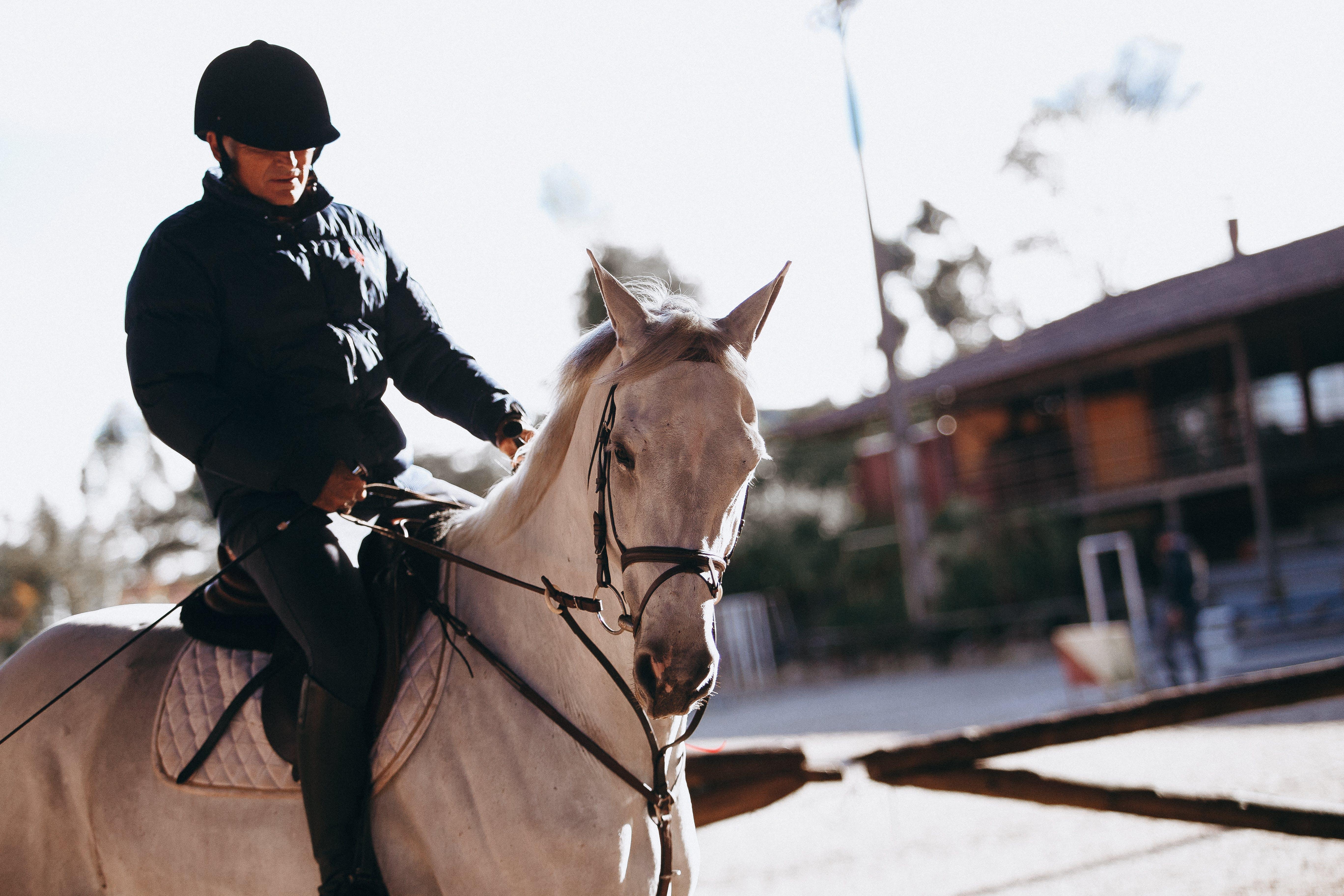 Man riding on horse   Photo: Pexels