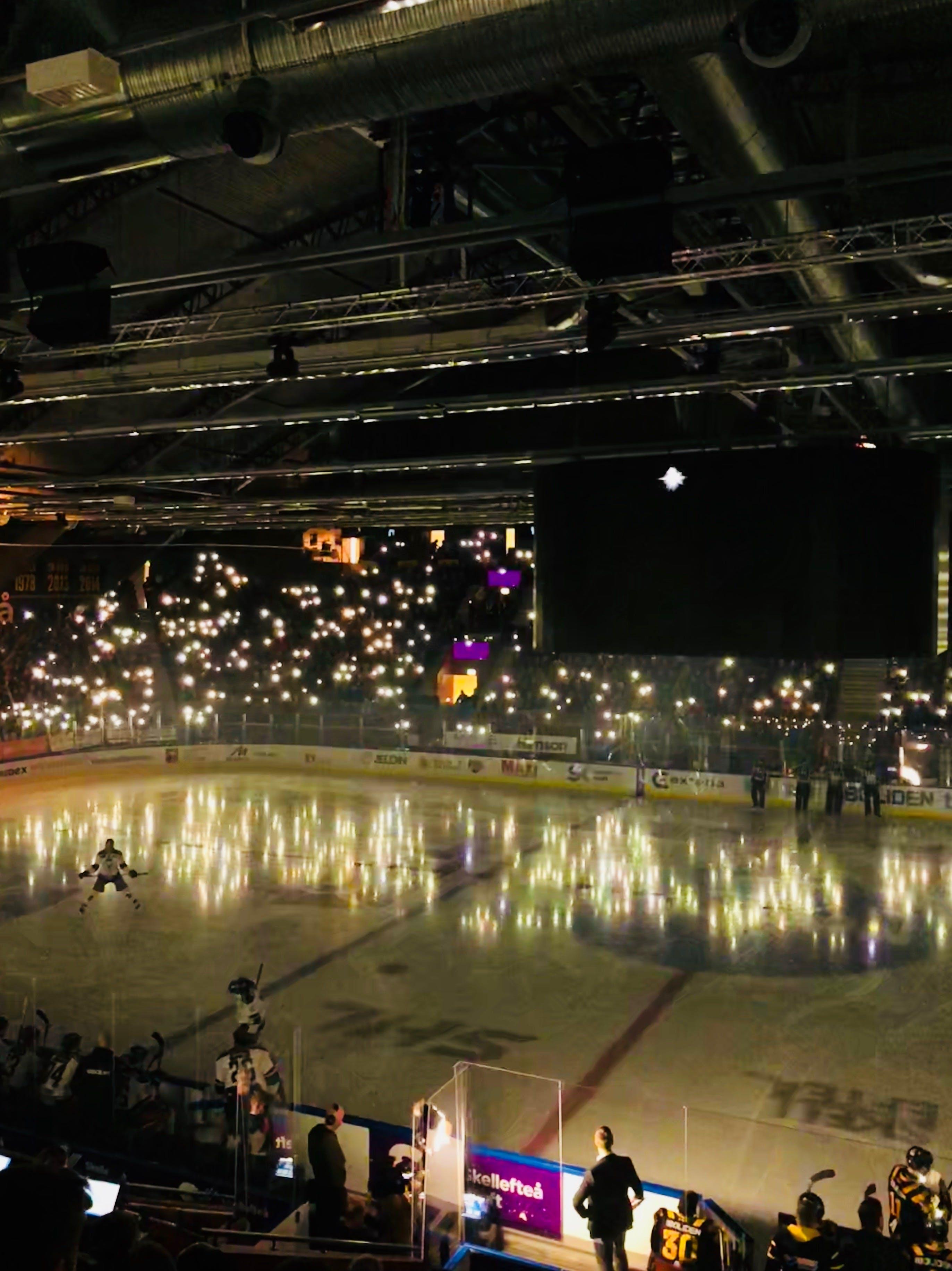 Free stock photo of icehockey