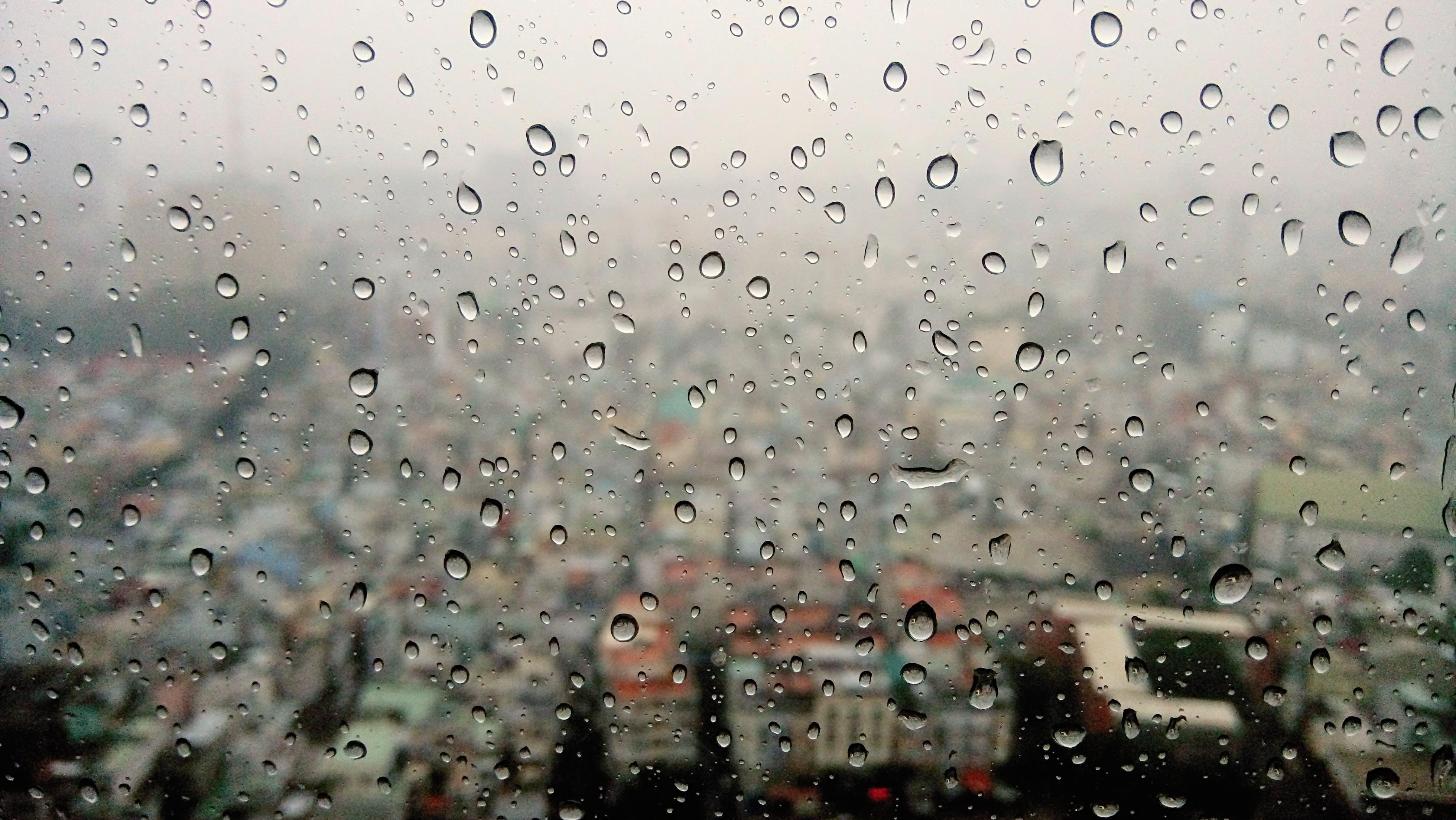 Free stock photo of city, rain, floor, dewdrop