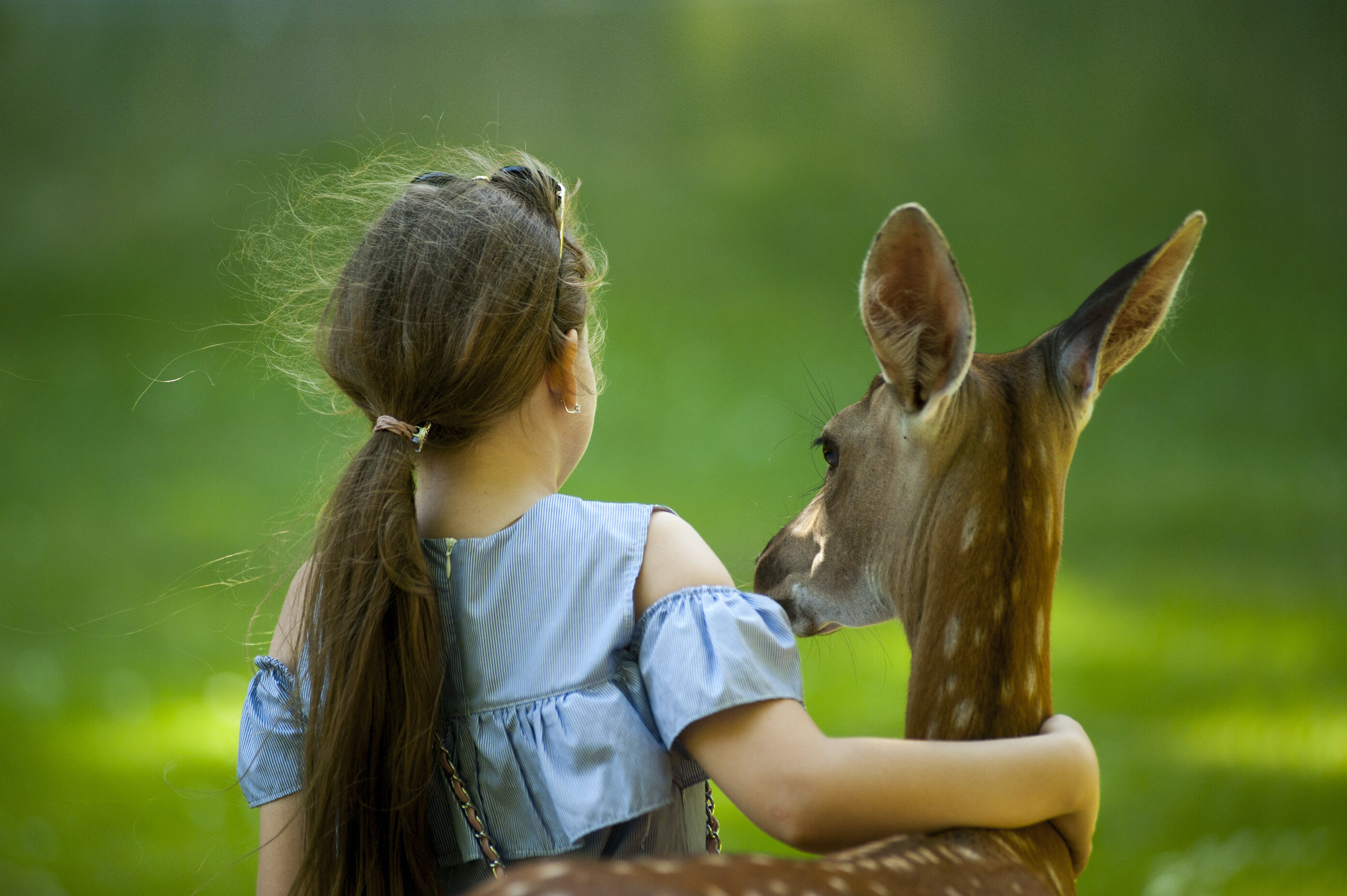 Girl Wearing Blue Top With her hand around a deer