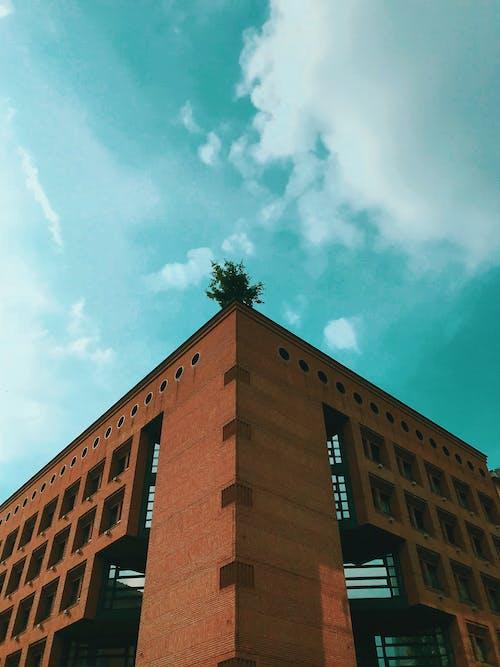 Fotobanka sbezplatnými fotkami na tému architektúra, budova, denné svetlo, kancelária