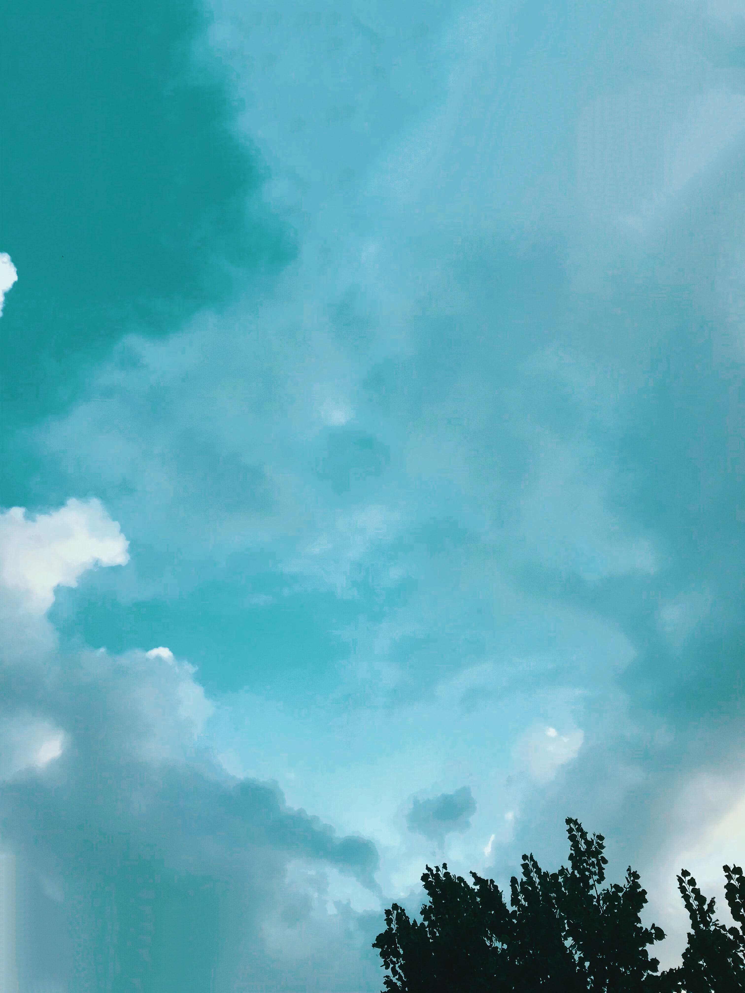 Free stock photo of bright, cloud, color, daylight