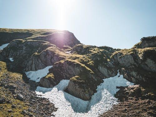 Foto stok gratis awan, cahaya matahari, flora, langit biru