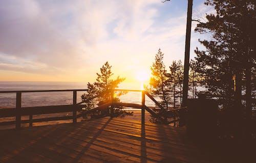 Základová fotografie zdarma na téma krajina, léto, lotyšsko, moře