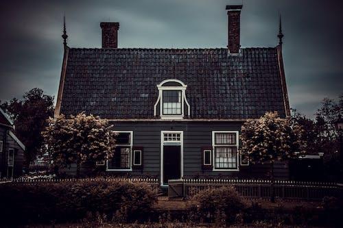 마을, 무서운, 비명을 지르는, 소름 끼치는의 무료 스톡 사진