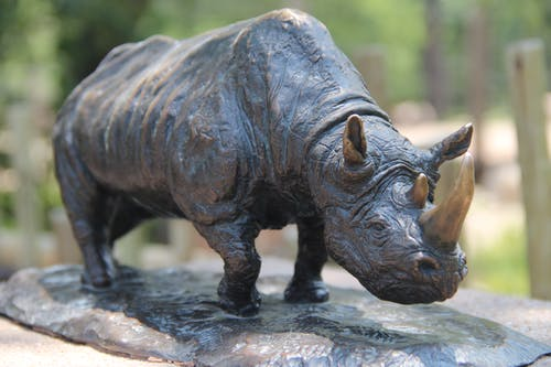Free stock photo of rhino, statue, wildlife, zoo