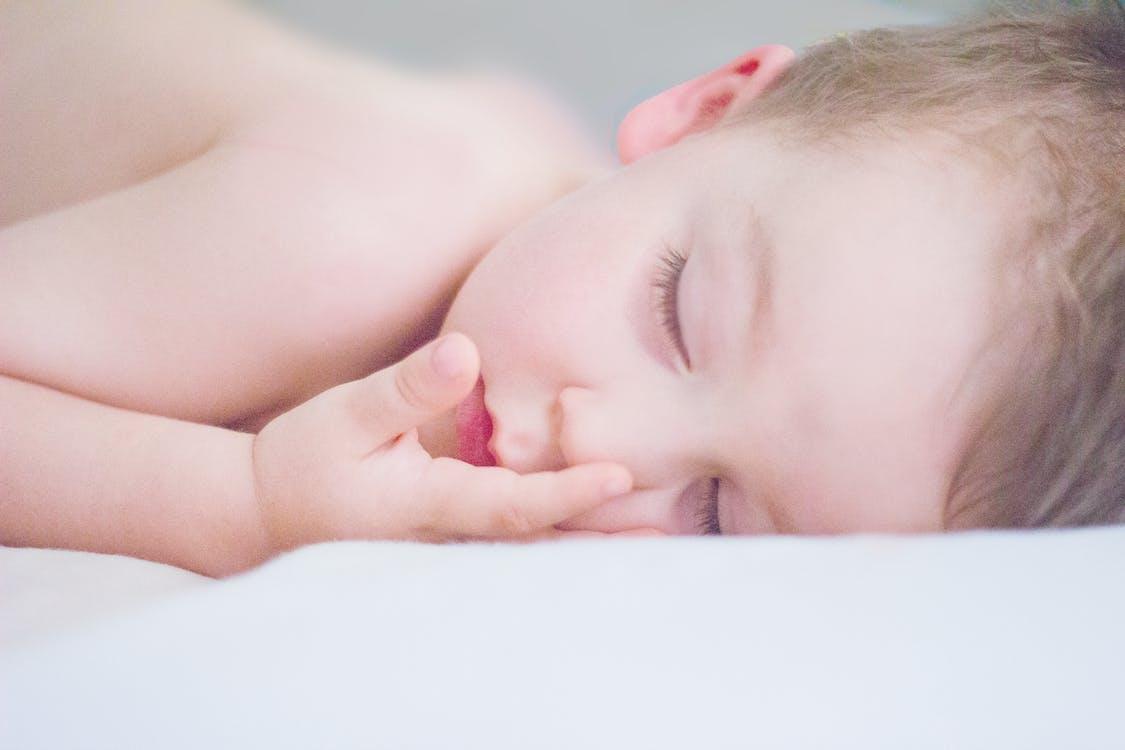 Ingyenes stockfotó álló kép, alvás, aranyos témában