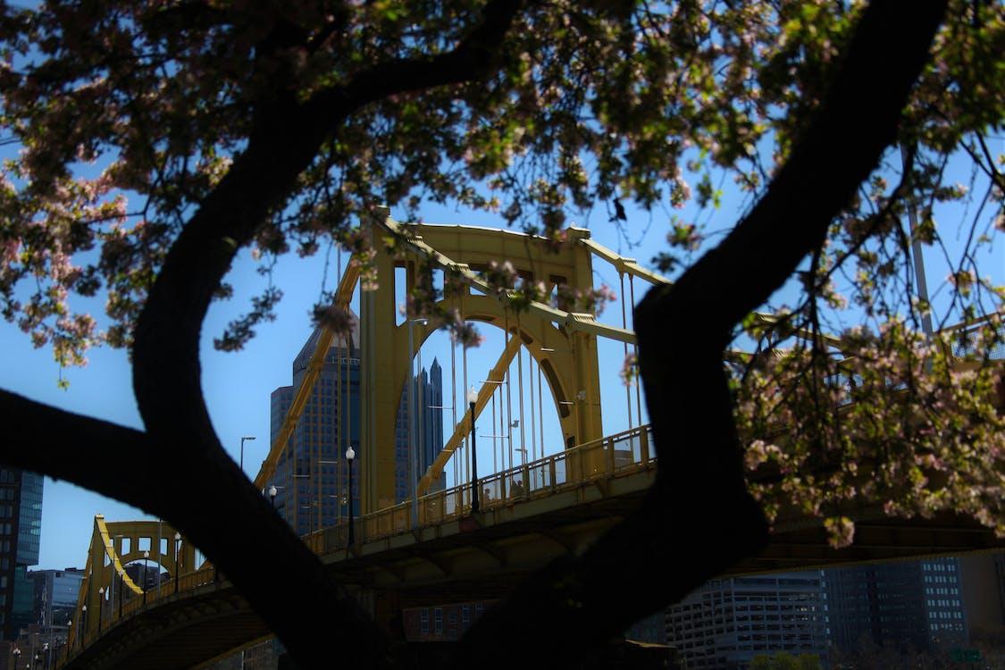 blue sky, bridge, downtown