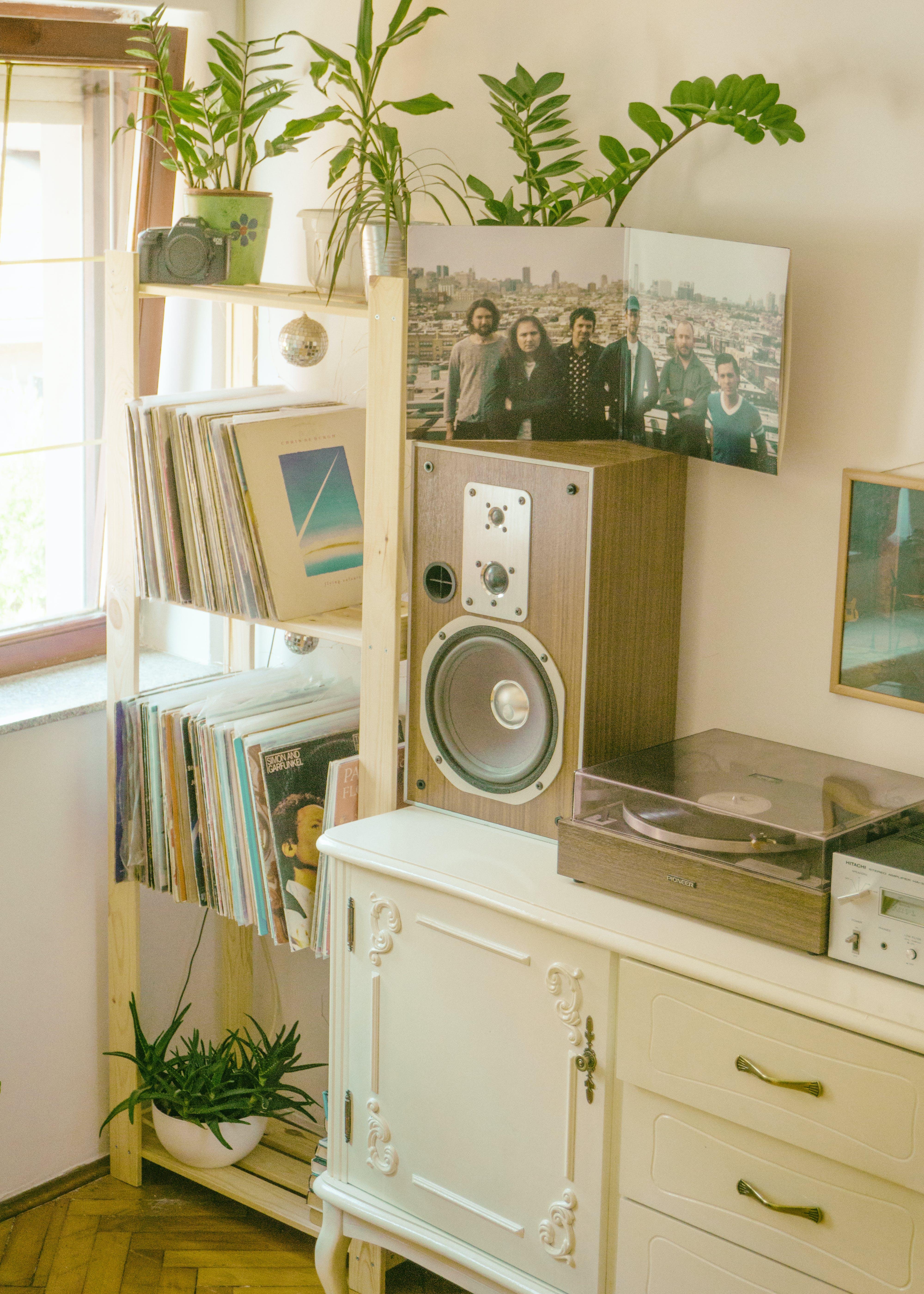 Gratis lagerfoto af album, årgang, billeder, bogreoler