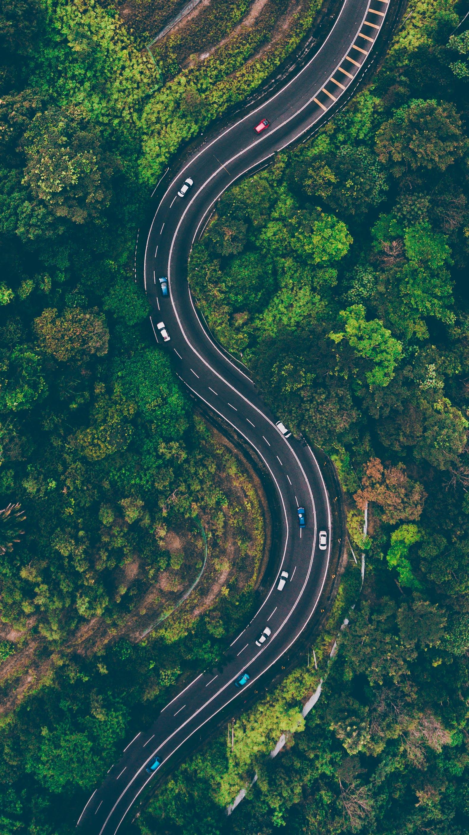 Kostenloses Stock Foto zu autobahn, bäume, fahrzeuge, kurve