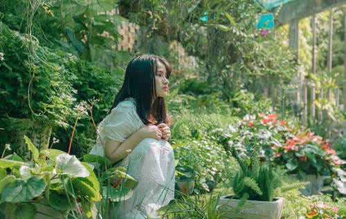 Female Beside on Plants