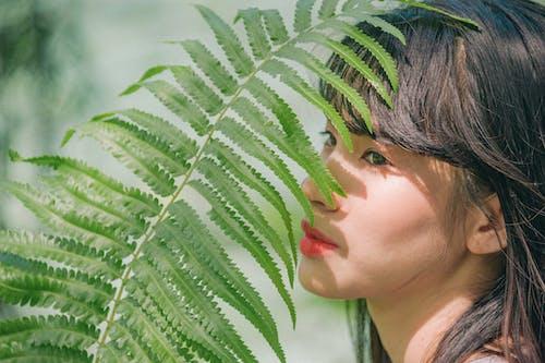 소녀, 식물군, 아름다운, 양치식물의 무료 스톡 사진