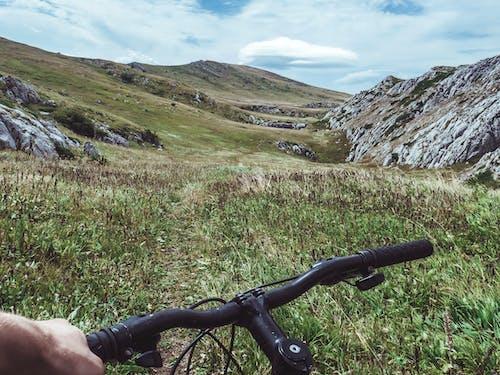 冒險, 天性, 小路, 山丘 的 免費圖庫相片