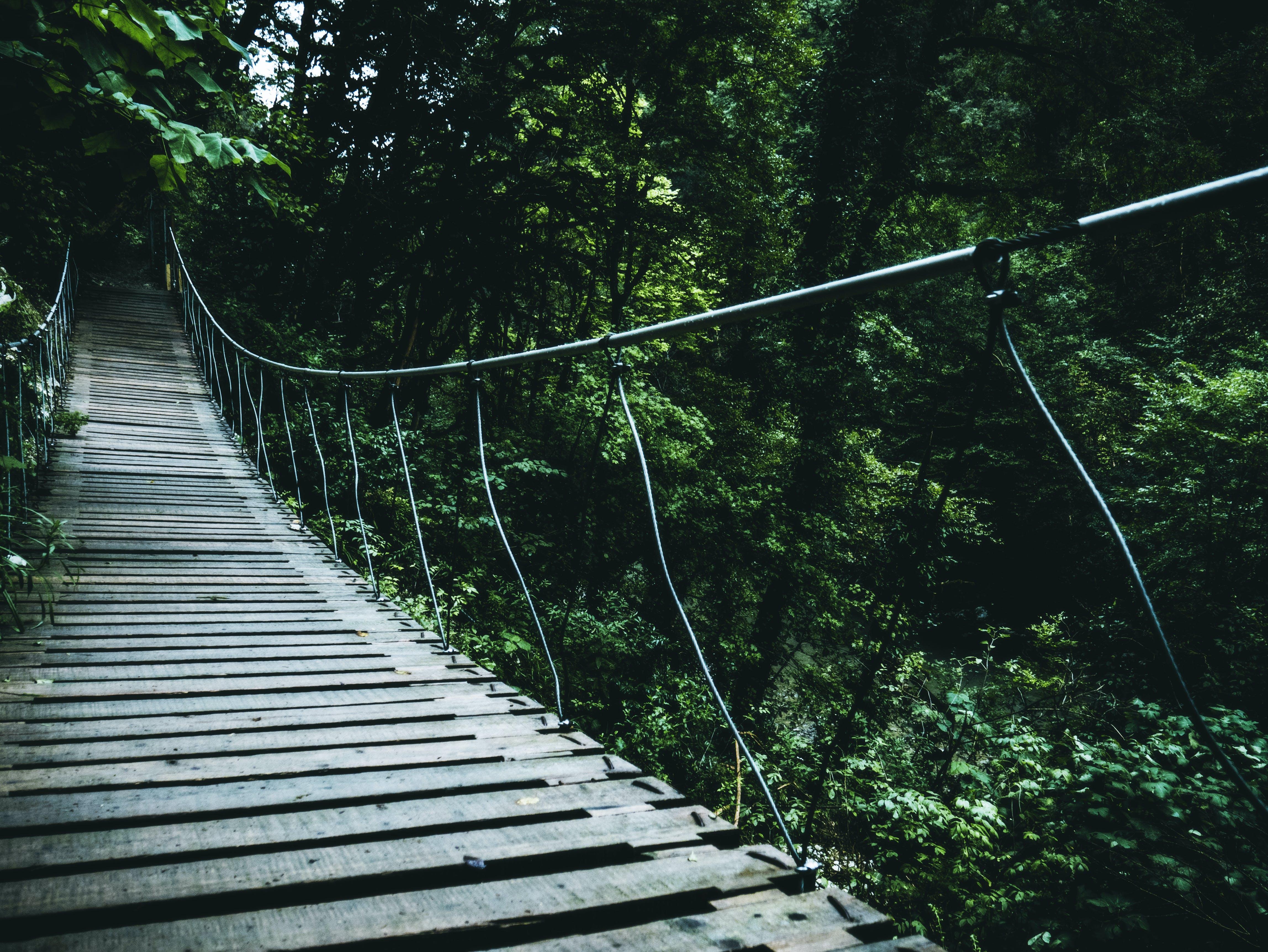 Brown Hanging Bridge