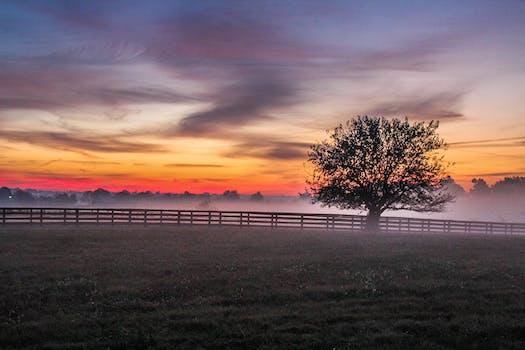 Free stock photos of sunset background pexels sciox Choice Image