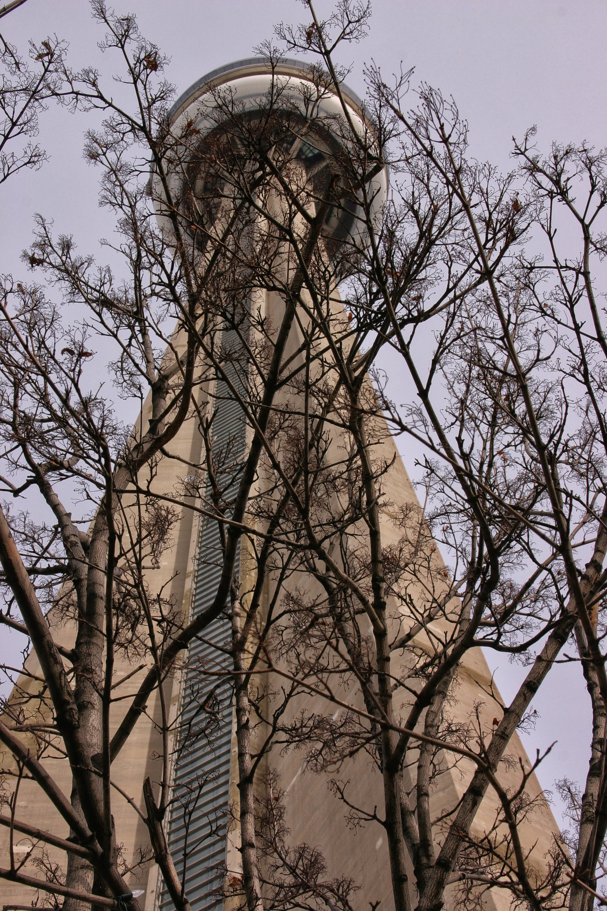 Free stock photo of observation tower, sky needle, tall