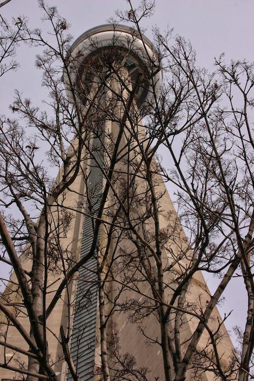 Fotos de stock gratuitas de aguja del cielo, alto, Torre de observación