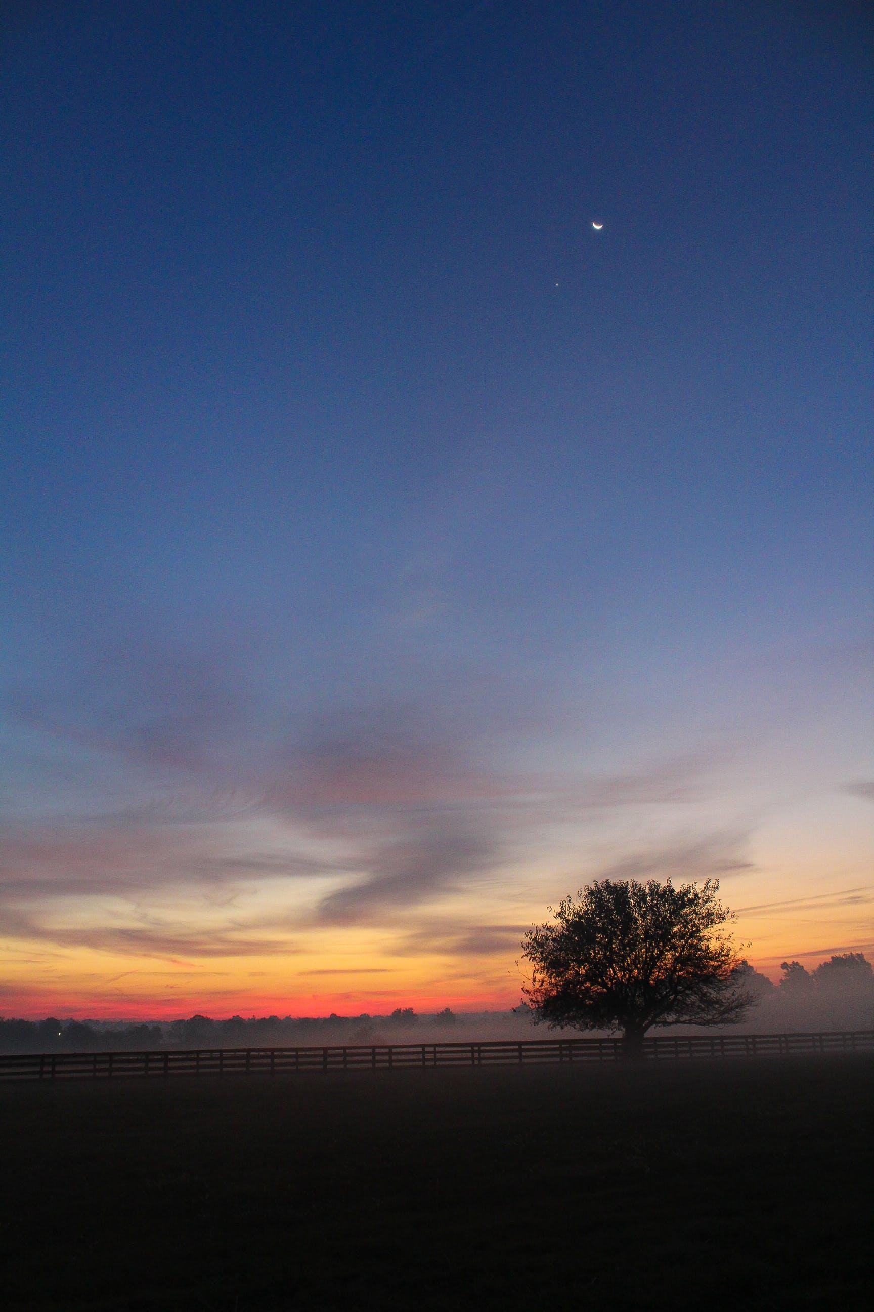 Kostenloses Stock Foto zu abend, baum, himmel, sonnenuntergang