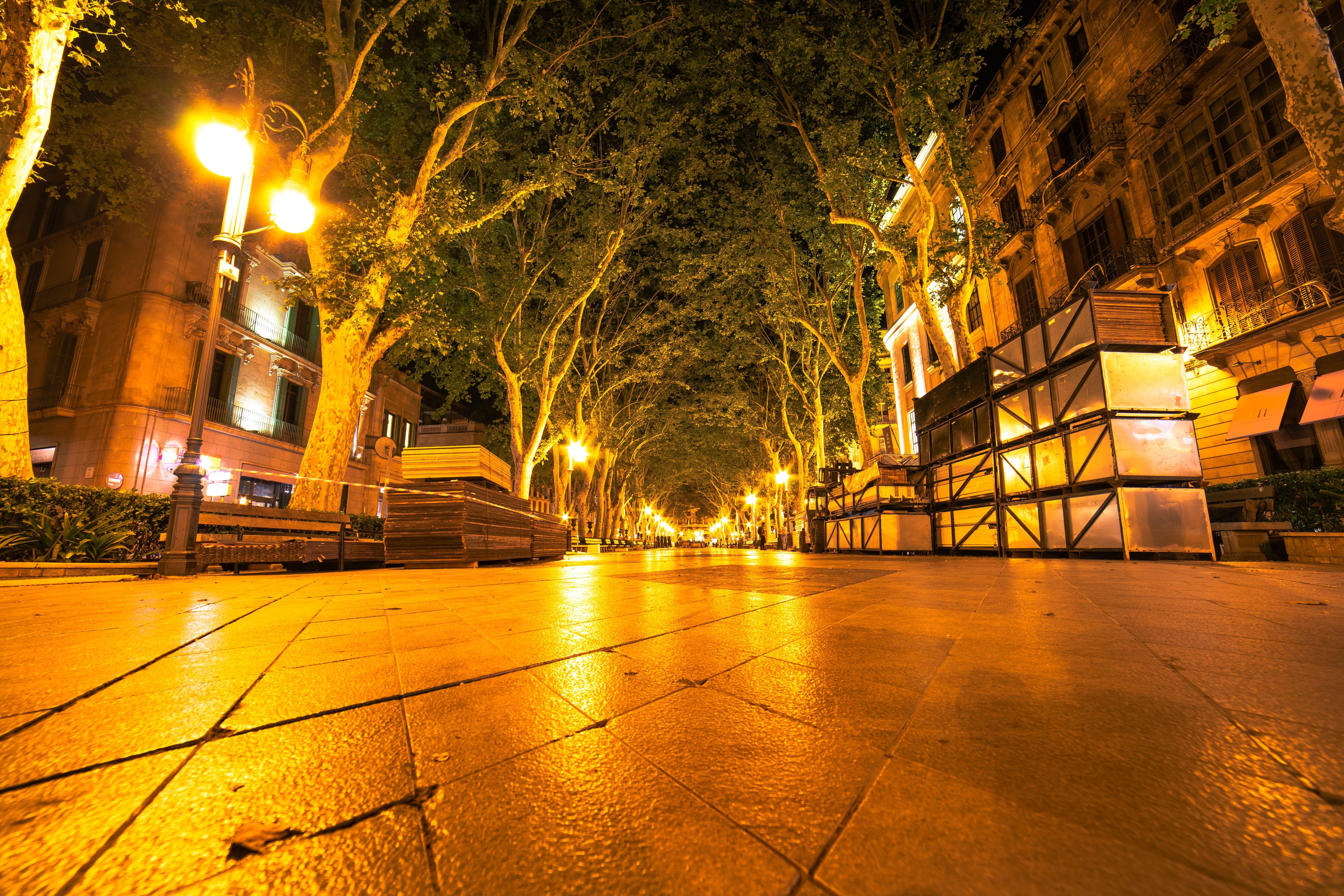 aften, arkitektur, asfalteret vej