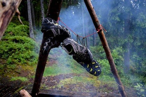 Δωρεάν στοκ φωτογραφιών με δασικός, παπούτσια ορειβασίας, πεζοπόροι, πεζοπόρος