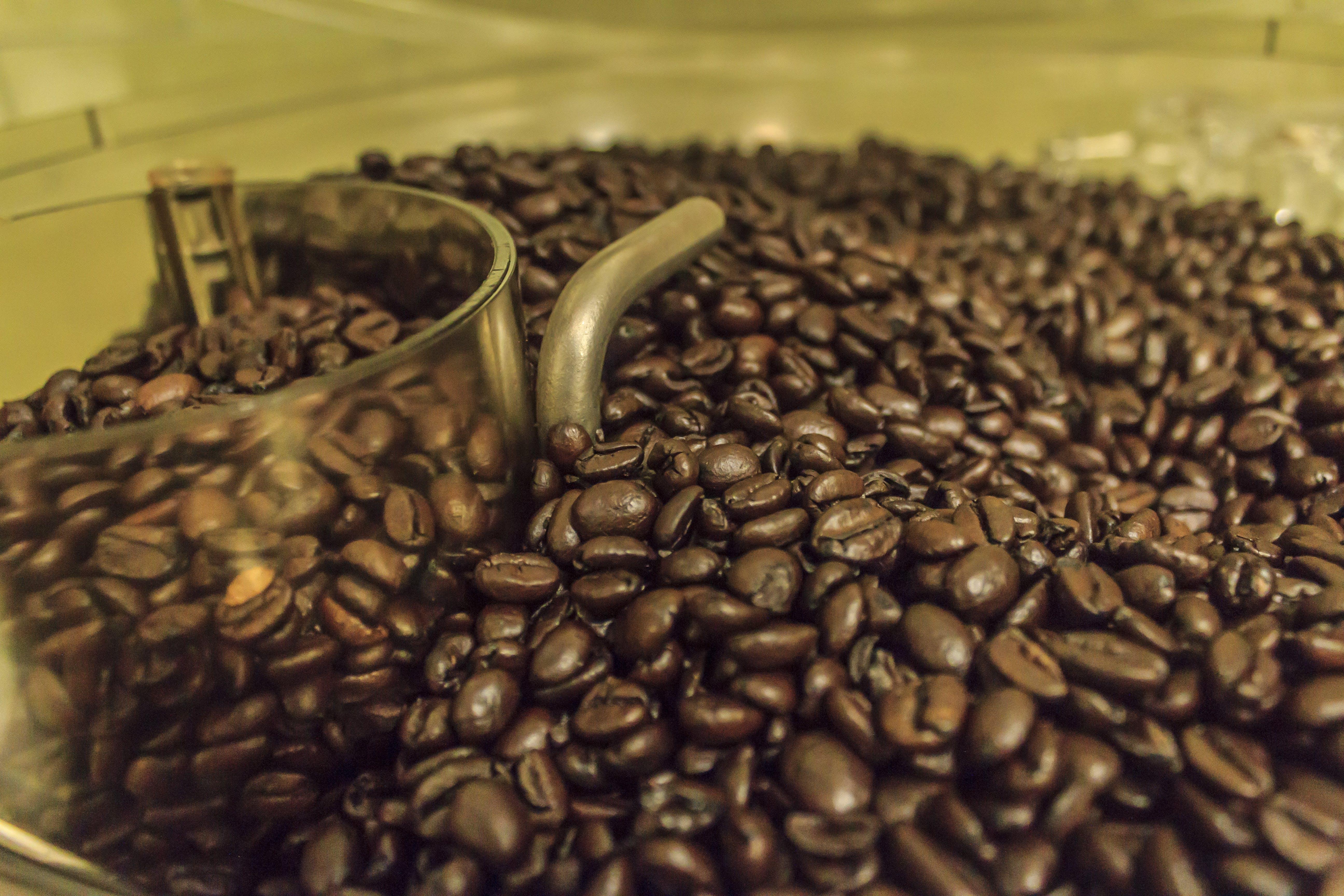 Free stock photo of coffee, coffee bean, roasted coffee beans