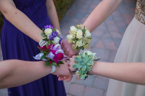 Free stock photo of corsages, dance, girls