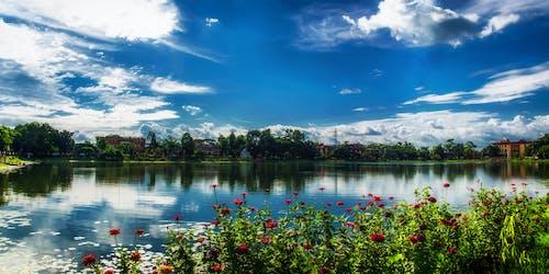 Free stock photo of beauty, cloudy sky, lakeside, landscape