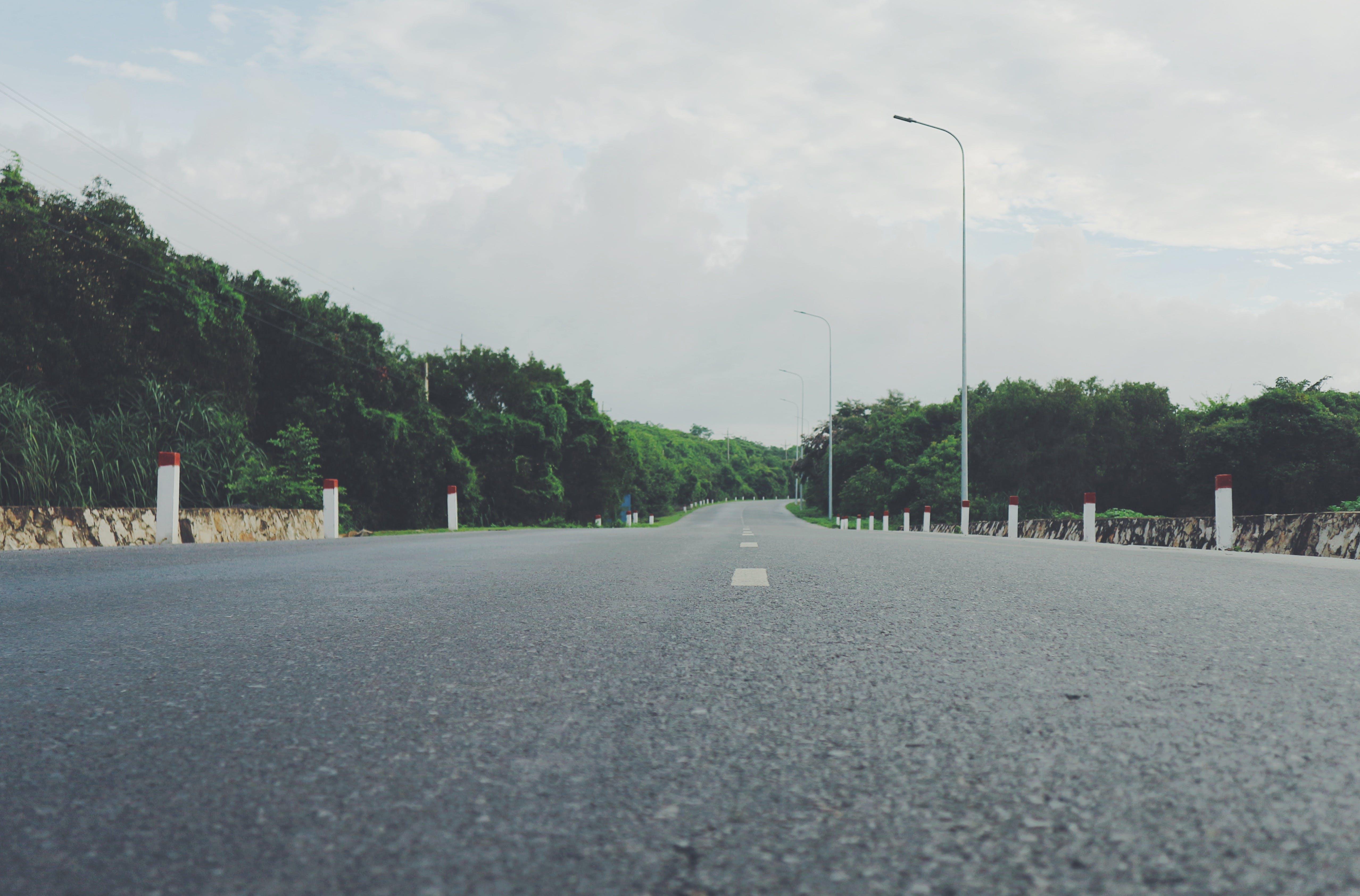 Gratis arkivbilde med asfalt, hovedvei, landskap, trær