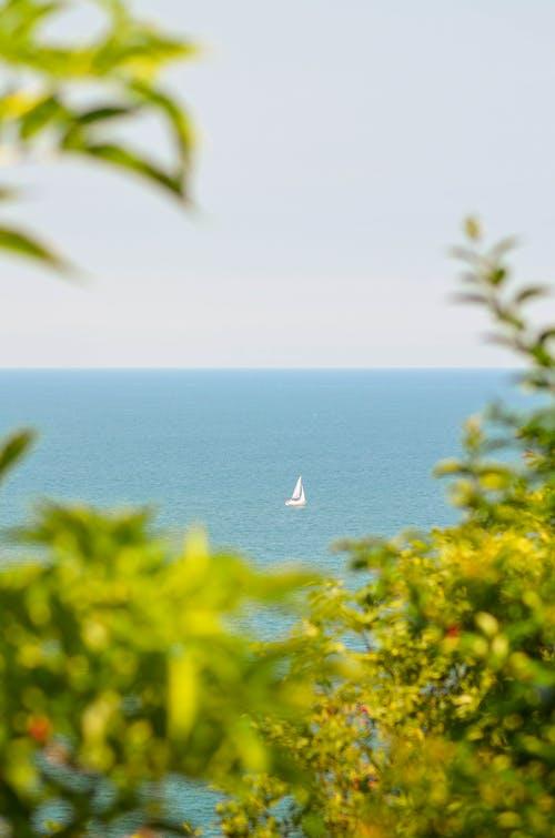 Photos gratuites de arbres, bateaux, ciel, horizon