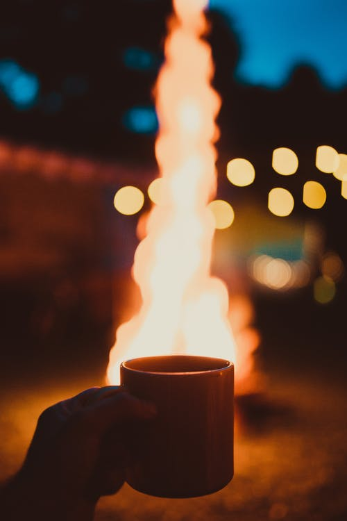 Photo of Person Holding Mug and Watching Bonfire