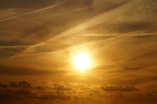 Photos gratuites de atmosphère, aube, coucher de soleil, couleur