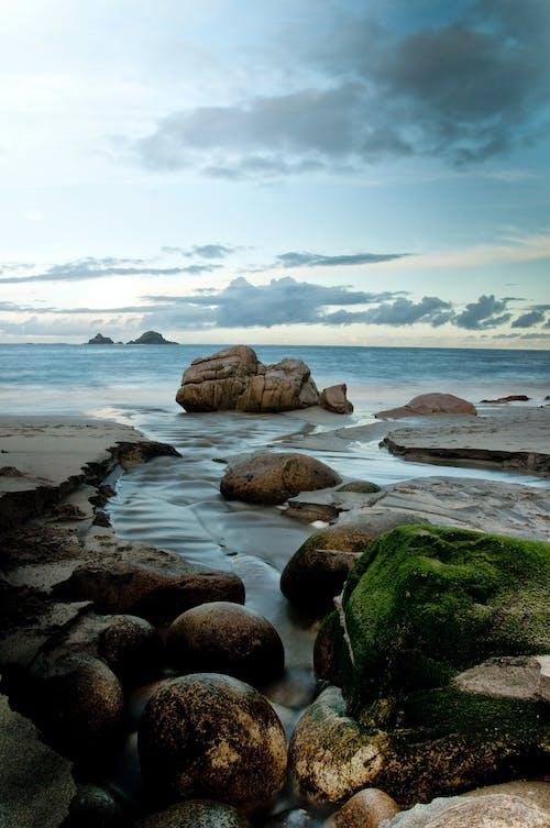 Fotos de stock gratuitas de amanecer, arena, mar, musgo