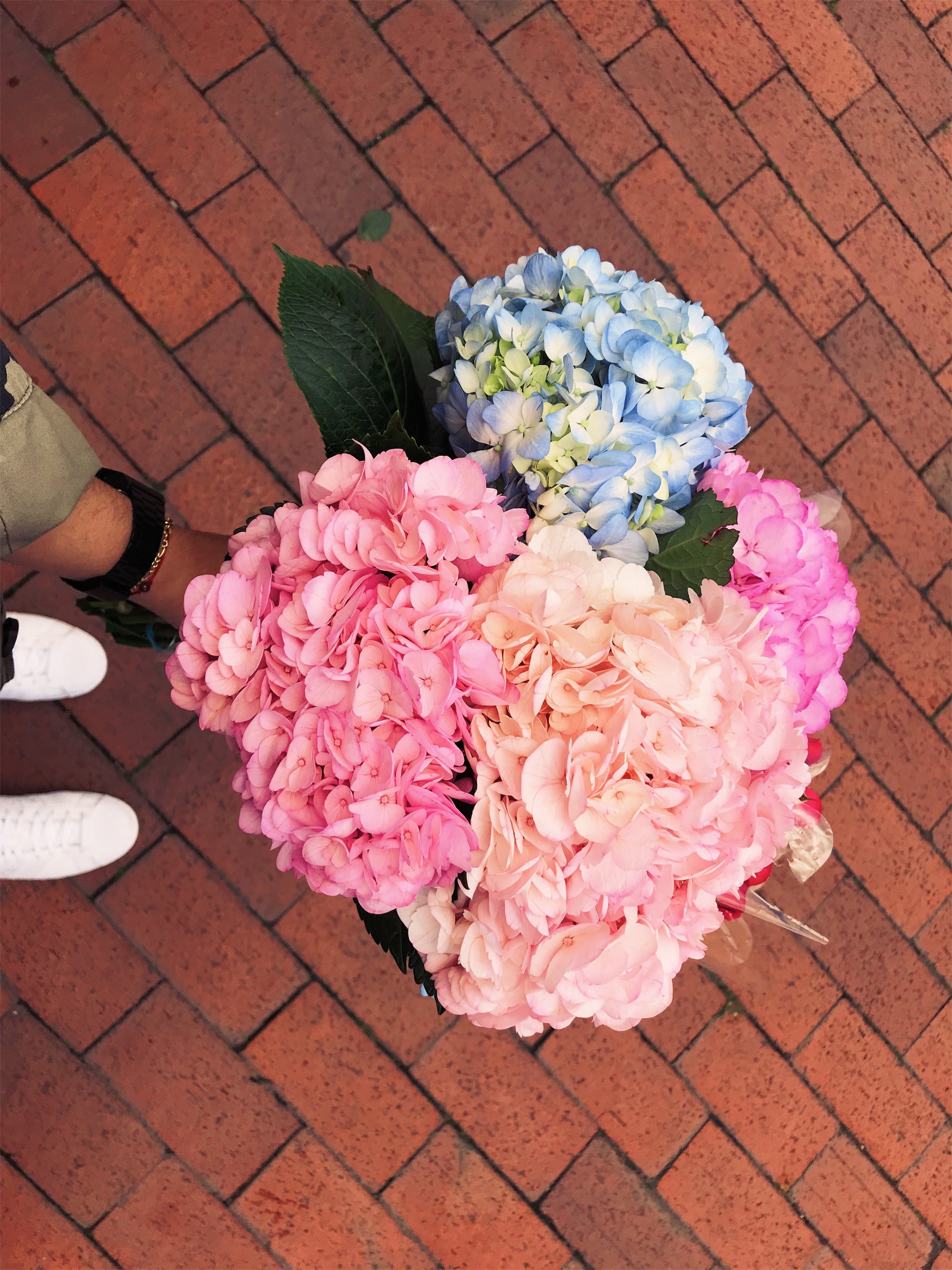 Assorted-color Flower Bouquets on Ground