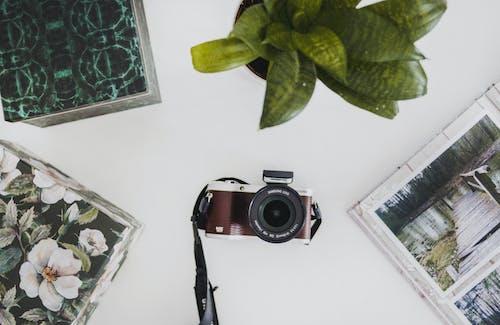 Imagine de stoc gratuită din aparat de fotografiat, ceaun, culori, fotografii