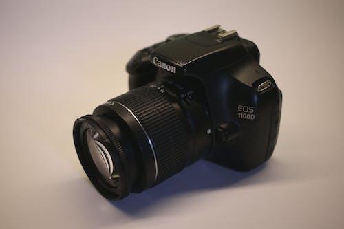 Imagine de stoc gratuită din alb, aparat de fotografiat, Canon, concentrare