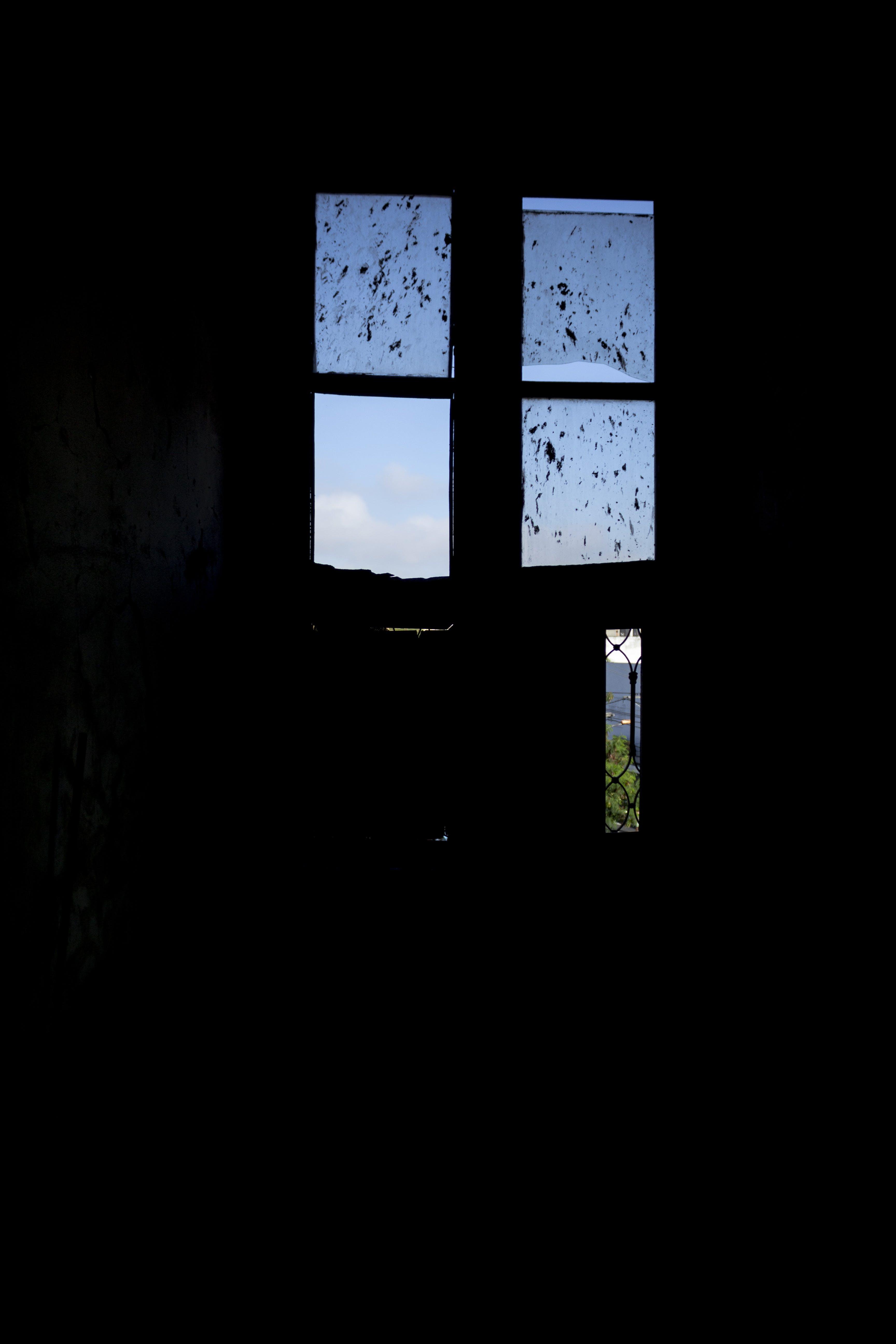 of church window, flight, freedom, glass window